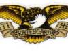 anti-hero-skateboards-eagle5x2sticker