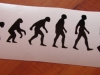 skateboardevolutionsticker