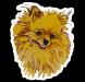 chiwawa-sweetie-sticker